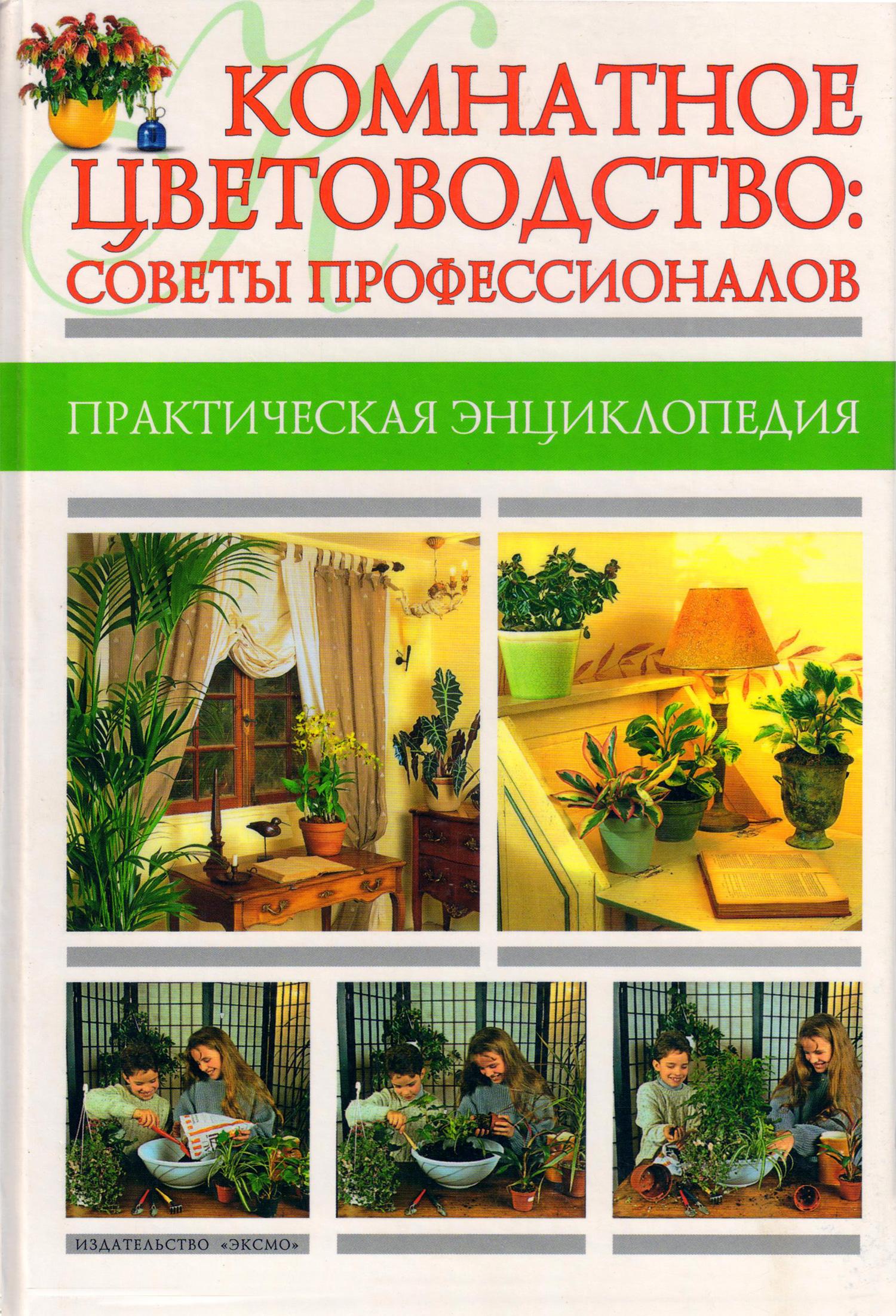 Комнатное цветоводство: советы профессионалов