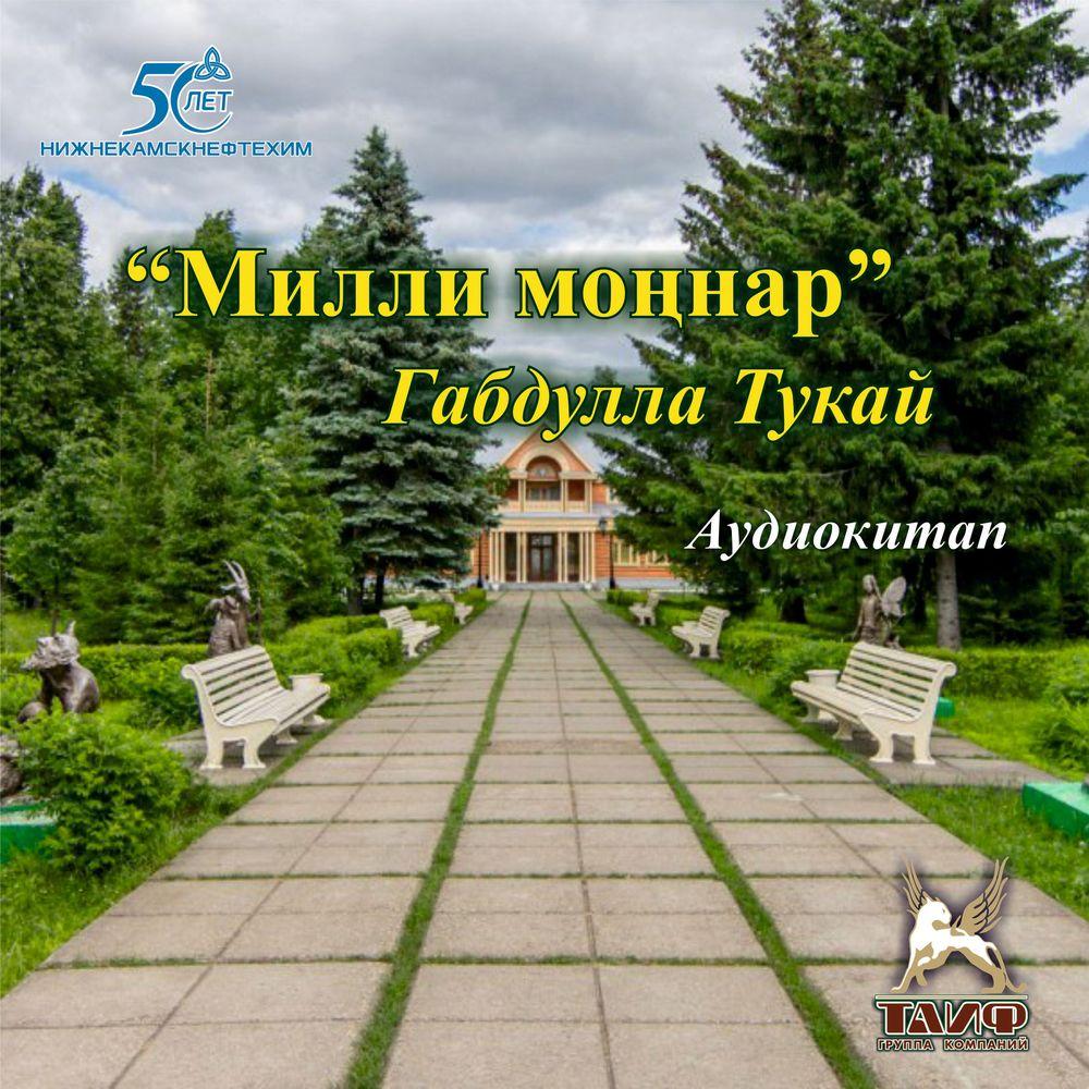 Милли моңнар (сборник стихов для взрослых)