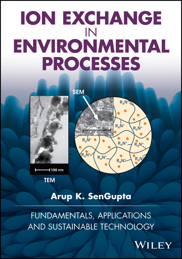 Ion Exchange in Environmental Processes. Fundamentals, Applications and Sustainable Technology