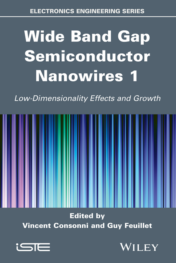 Wide Band Gap Semiconductor Nanowires for Optical Devices. Low-Dimensionality Related Effects and Growth