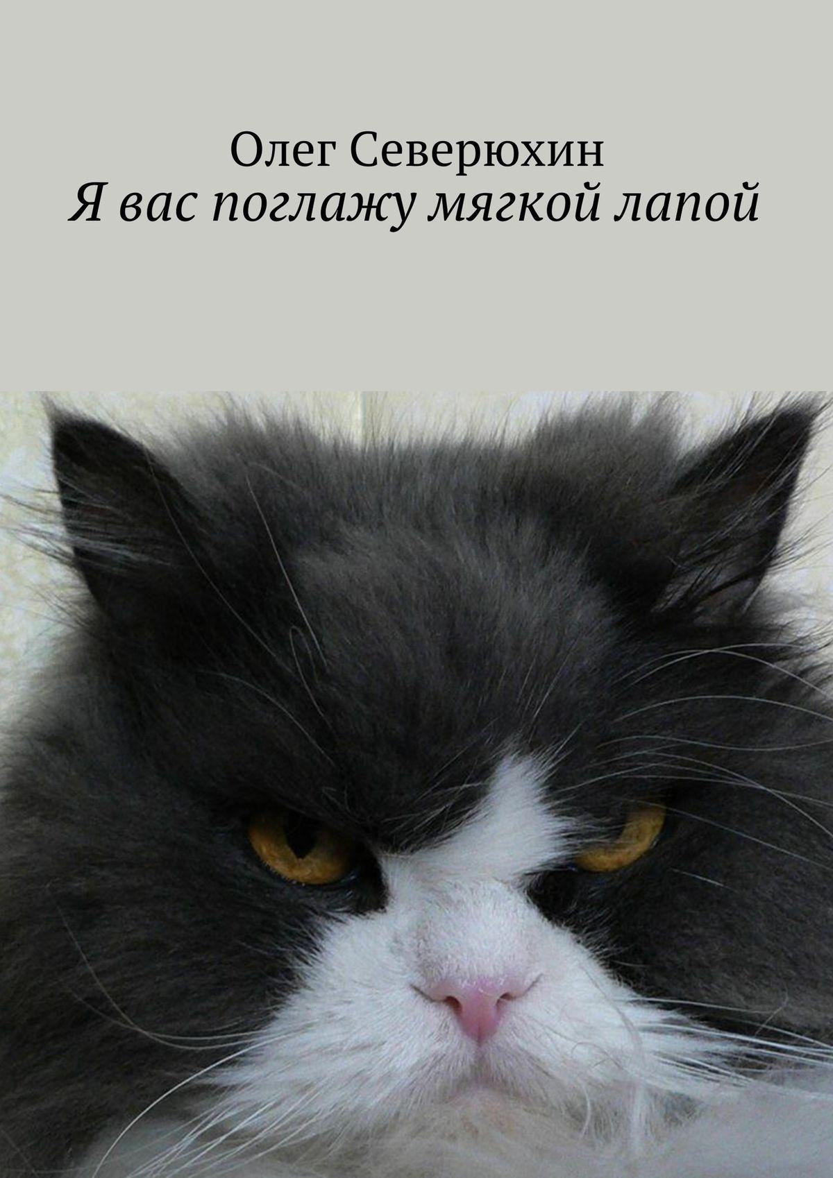 Олег Васильевич Северюхин Я вас поглажу мягкой лапой олег васильевич северюхин утро 2020 года