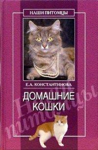 Екатерина Константинова Домашние кошки утюг парогенераторы для дома как выбрать цена