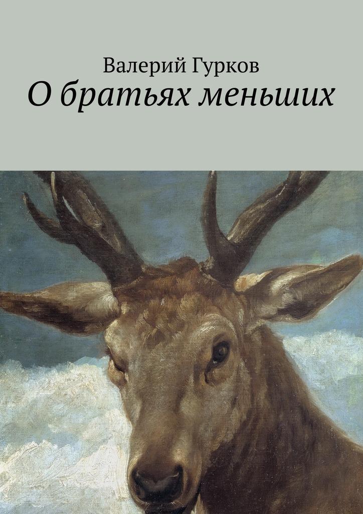 Валерий Гурков Обратьях меньших цена 2017