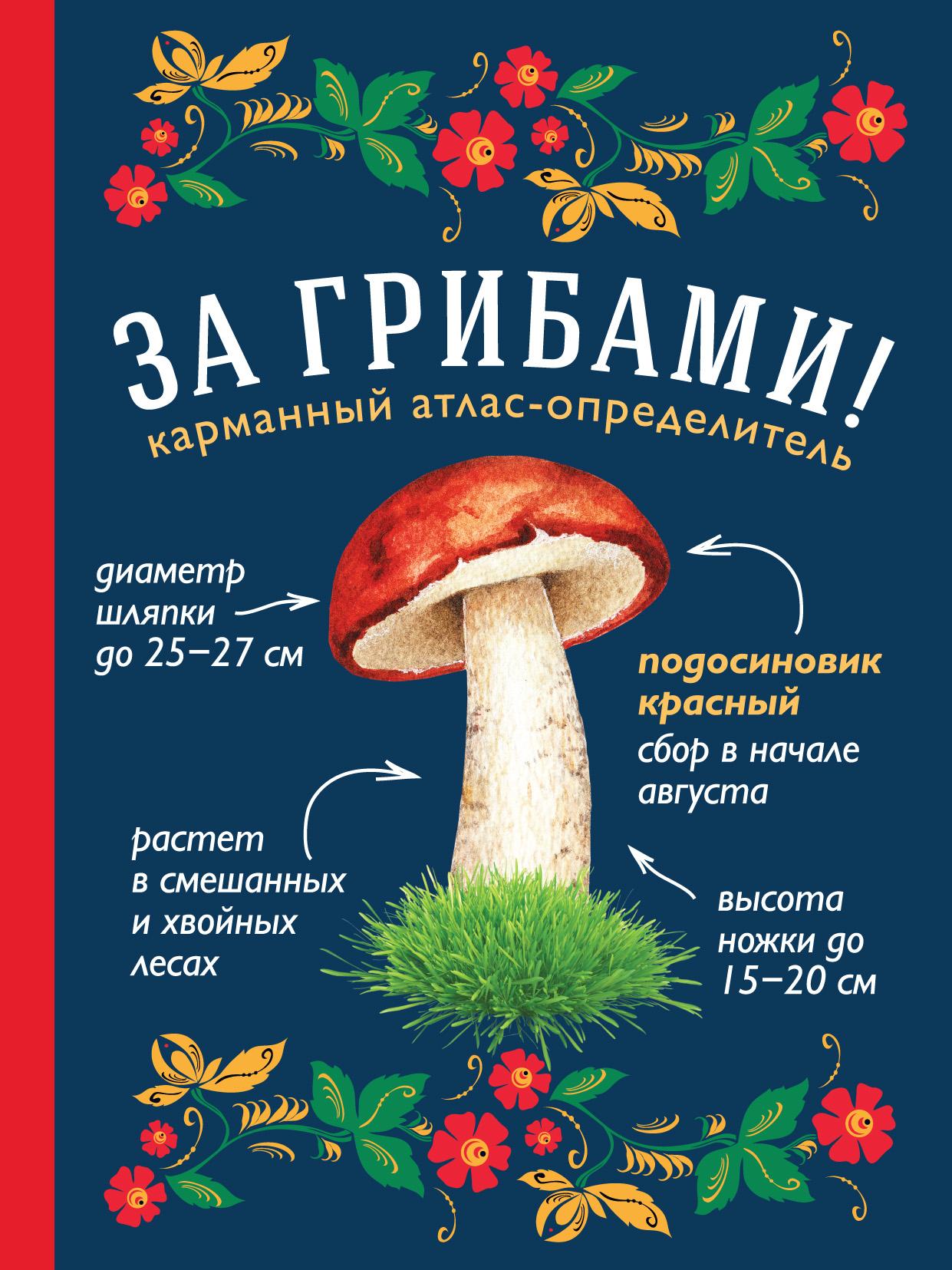 Татьяна Ильина За грибами. Карманный атлас-определитель татьяна ильина грибы атлас определитель