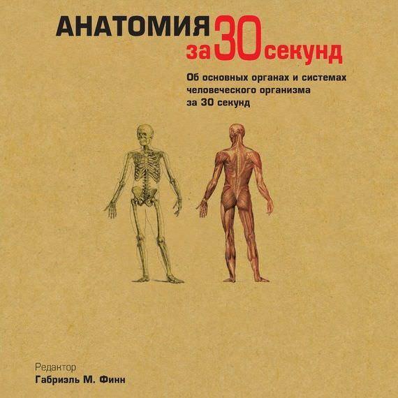 Коллектив авторов Анатомия за 30 секунд и а пурисов мозг и разум центральная нервная система