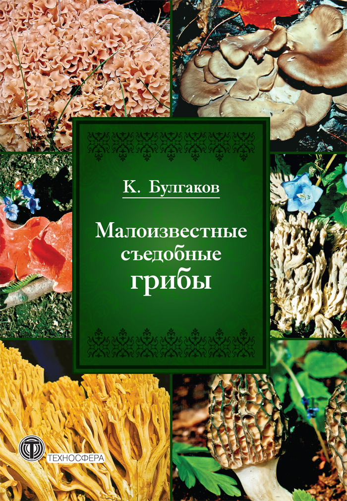 К. Г. Булгаков Малоизвестные съедобные грибы dr oetker пикантфикс для грибов 100 г