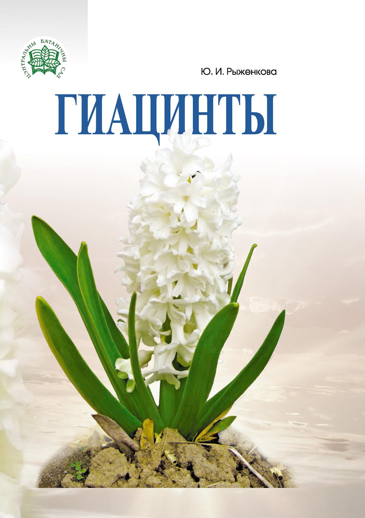 Юлия Рыженкова Гиацинты рыженкова юлия тюльпаны