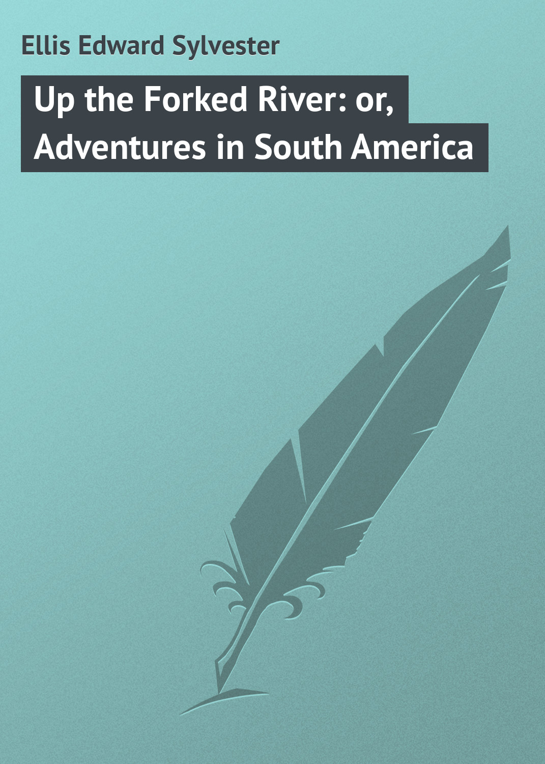 Ellis Edward Sylvester Up the Forked River: or, Adventures in South America