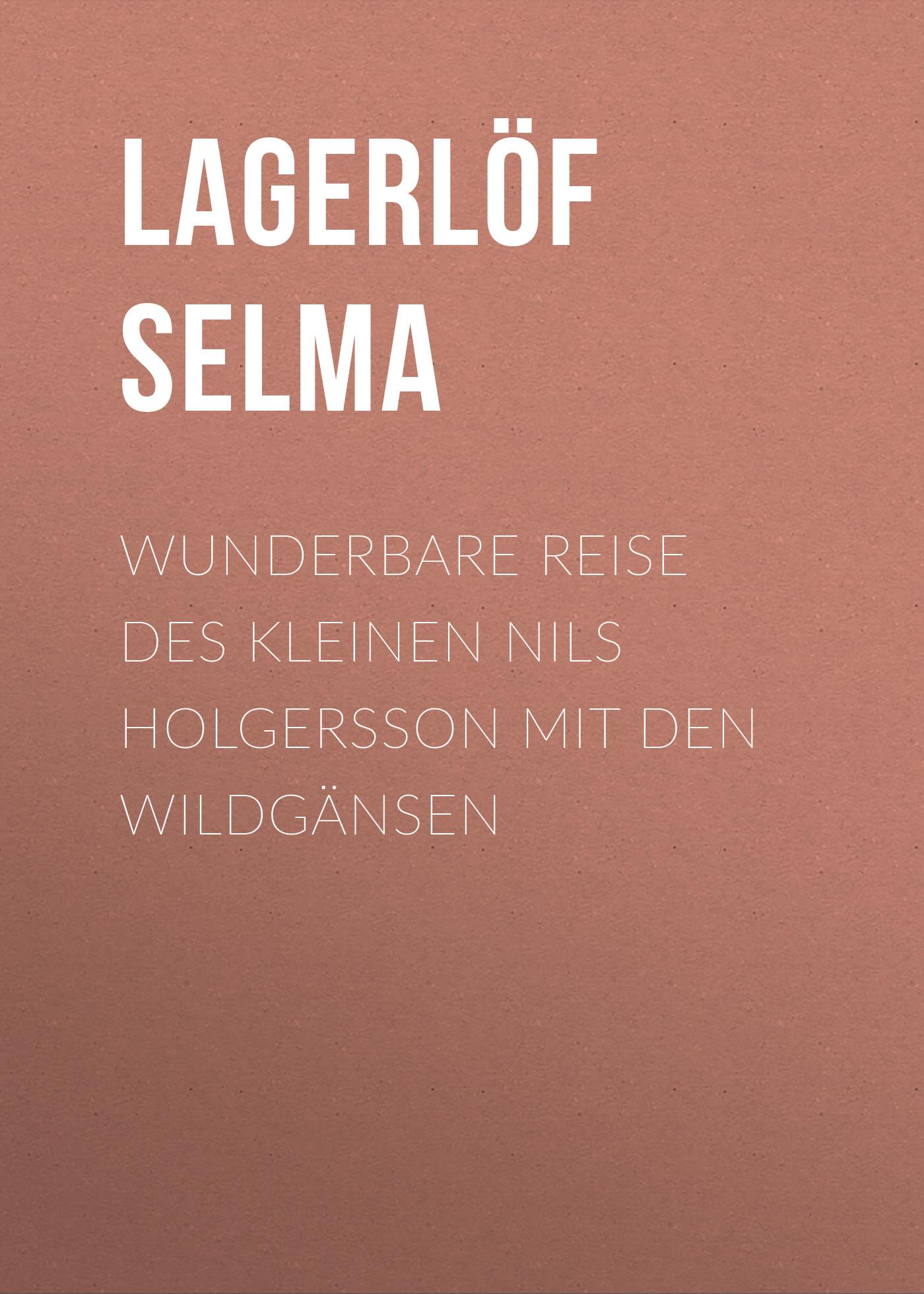 Lagerlöf Selma Wunderbare Reise des kleinen Nils Holgersson mit den Wildgänsen meine wunderbare marchenwelt