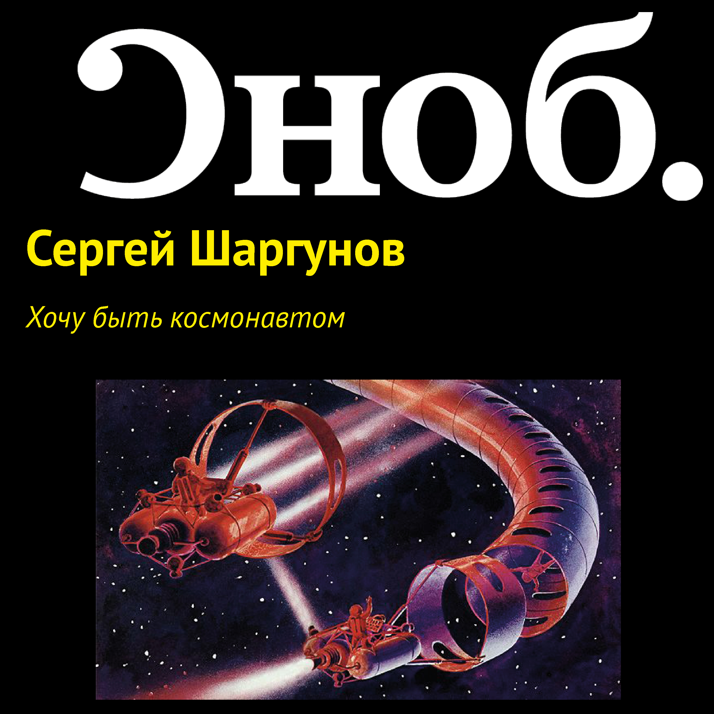 Сергей Шаргунов Хочу быть космонавтом букет ожидание чуда