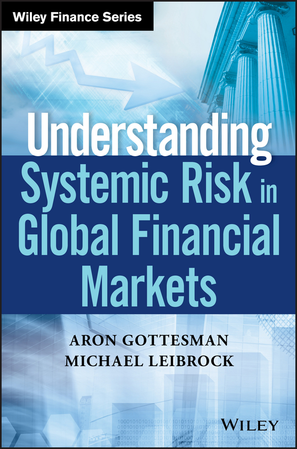Aron Gottesman Understanding Systemic Risk in Global Financial Markets купить недорого в Москве