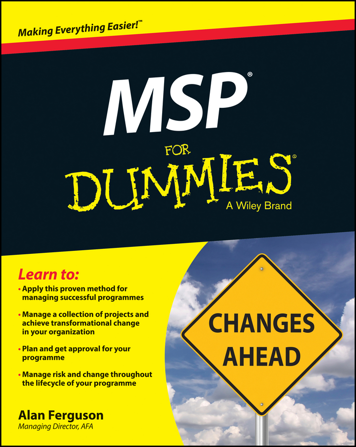 Alan Ferguson MSP For Dummies цена