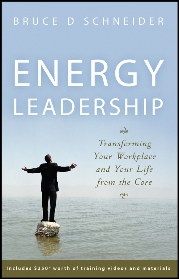 Bruce Schneider D. Energy Leadership. Transforming Your Workplace and Your Life from the Core cy wakeman reality based leadership ditch the drama restore sanity to the workplace and turn excuses into results