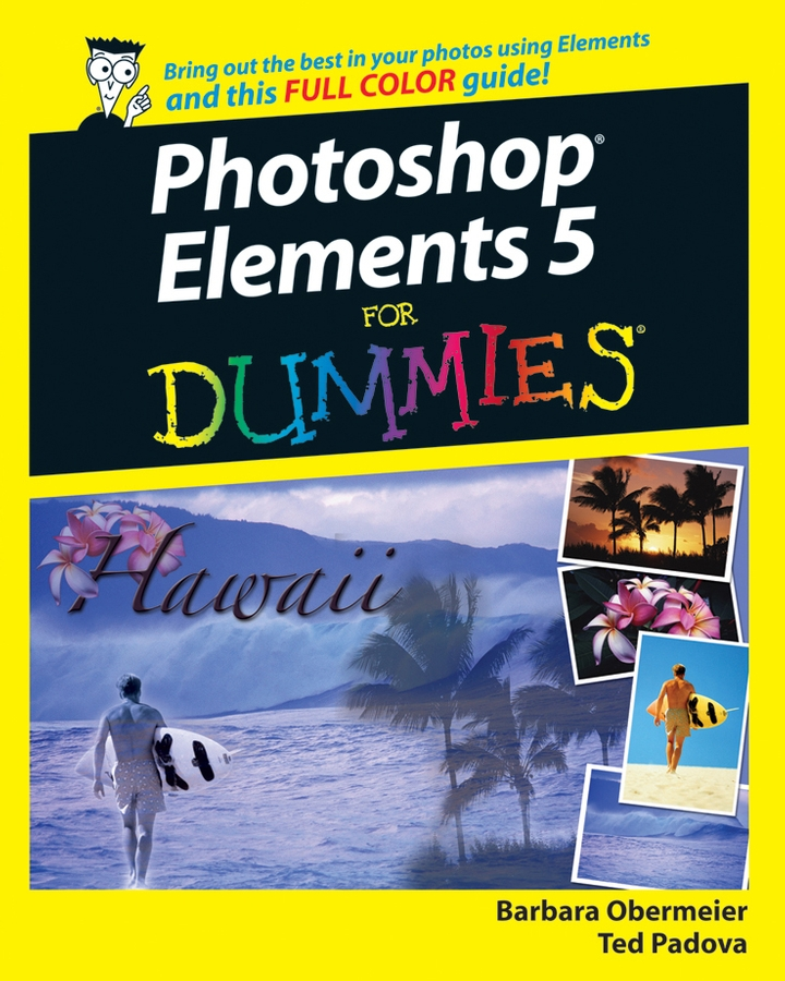 Barbara Obermeier Photoshop Elements 5 For Dummies baby props chrismas photography backdrops for photos studio vintage wooden wall children photo background vinyl photographic