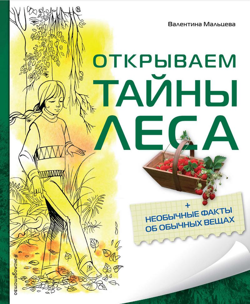 Валентина Мальцева Открываем тайны леса мальцева в открываем тайны леса