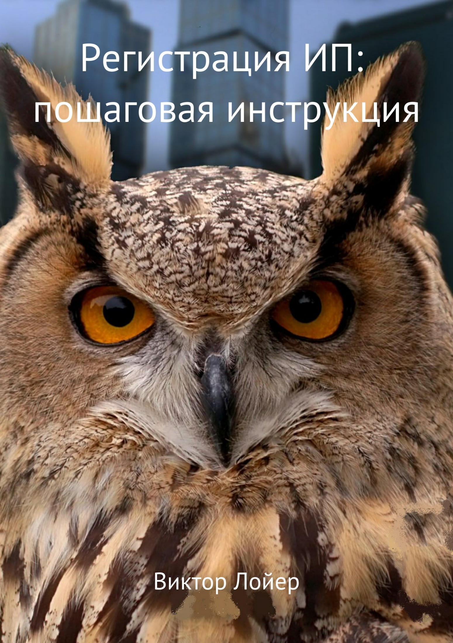 фото обложки издания Регистрация ИП: пошаговая инструкция