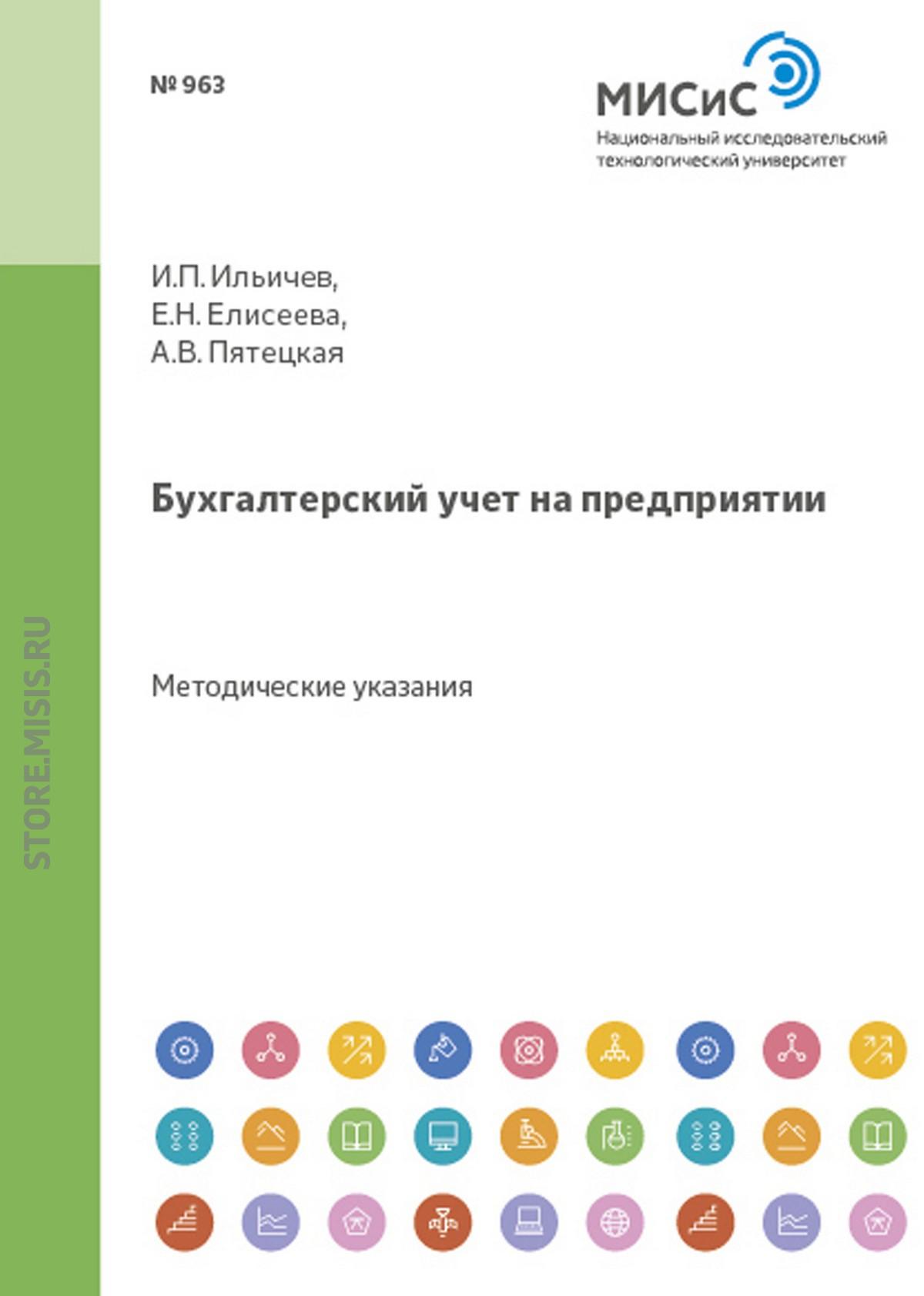 Е. Н. Елисеева Бухгалтерский учет на предприятии