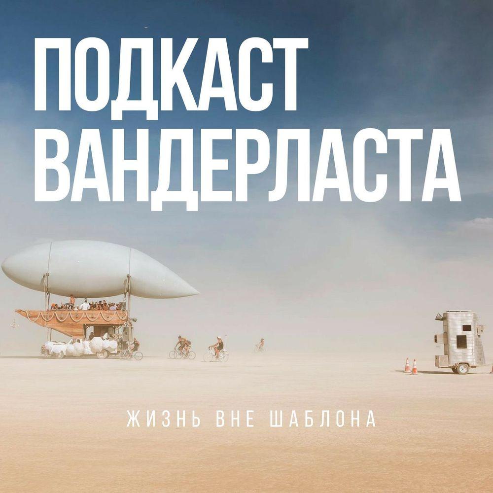 Шедина Светлана Как построить бизнес, если не любишь сидеть на одном месте цена в Москве и Питере