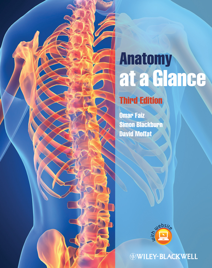 купить Simon Blackburn Anatomy at a Glance онлайн