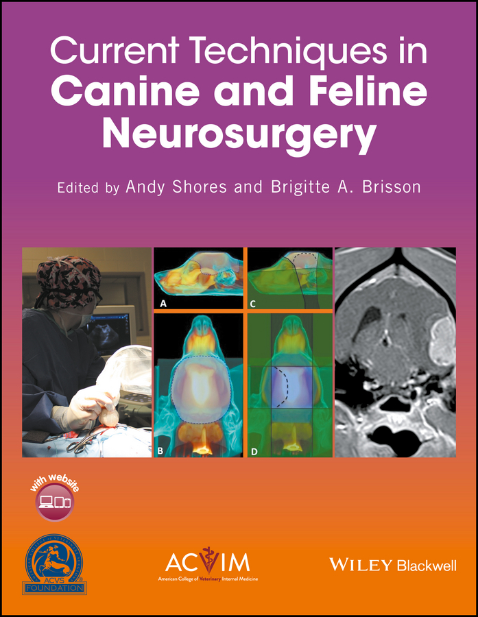 Andy Shores Current Techniques in Canine and Feline Neurosurgery все цены