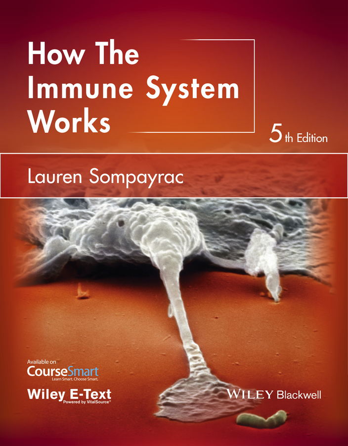 Lauren Sompayrac M. How the Immune System Works helen chapel essentials of clinical immunology