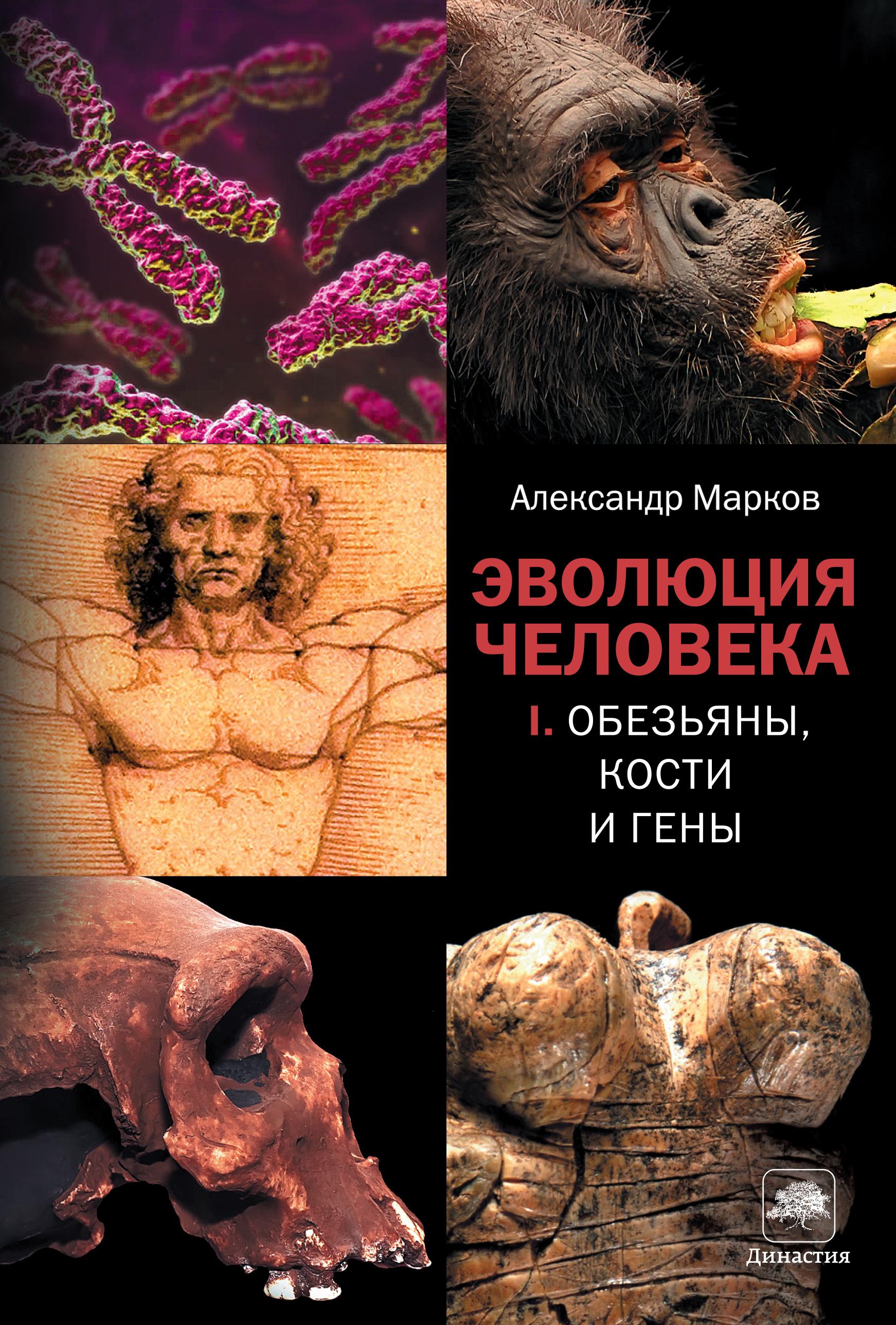 Александр Марков Обезьяны, кости и гены александр марков эволюция человека [в 2 кн ] кн 1 обезьяны кости и гены