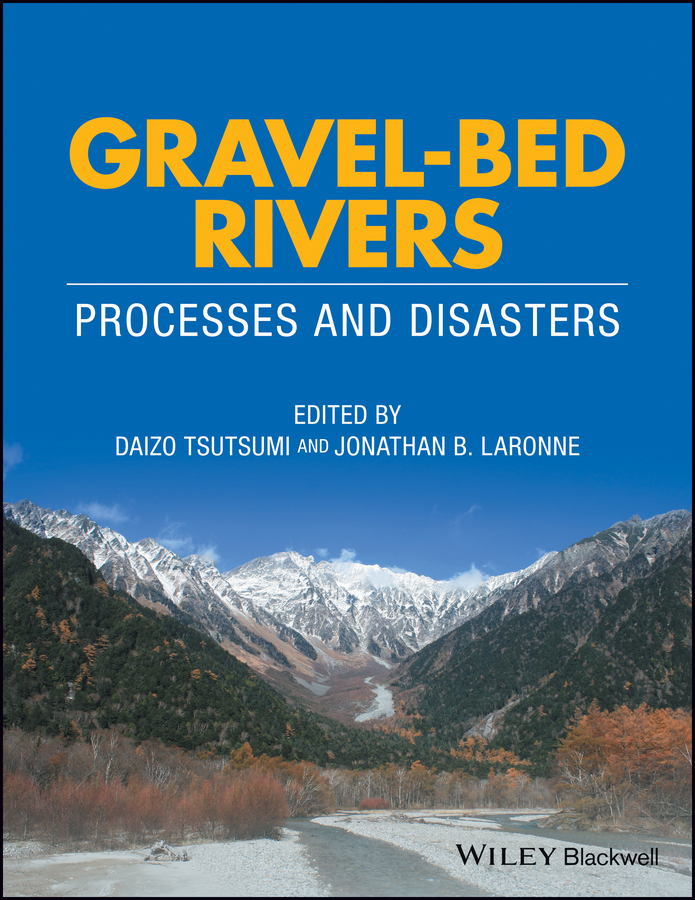 Фото - Daizo Tsutsumi Gravel-Bed Rivers. Process and Disasters the bed of procrustes