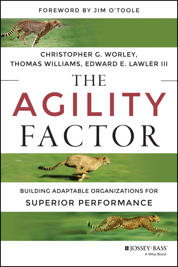 Christopher Worley G. The Agility Factor. Building Adaptable Organizations for Superior Performance preston smith g flexible product development building agility for changing markets