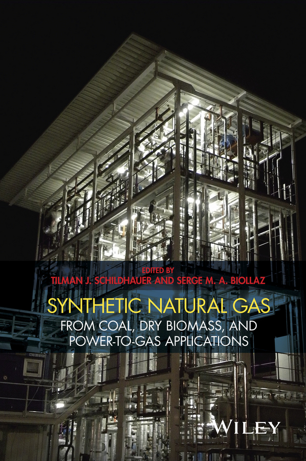 Serge Biollaz M.A. Synthetic Natural Gas. From Coal, Dry Biomass, and Power-to-Gas Applications wu ying acid gas injection and related technologies