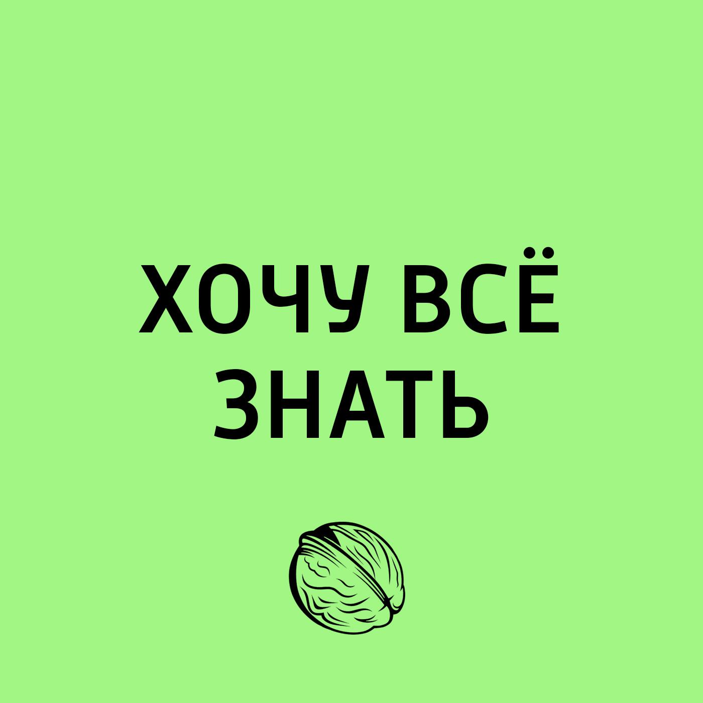 Творческий коллектив программы «Хочу всё знать» Удивительное в мире растений творческий коллектив программы хочу всё знать органы чувств у растений