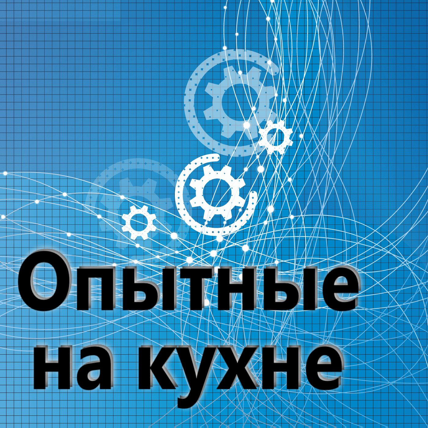 Евгений Плешивцев Опытные на кухне №069