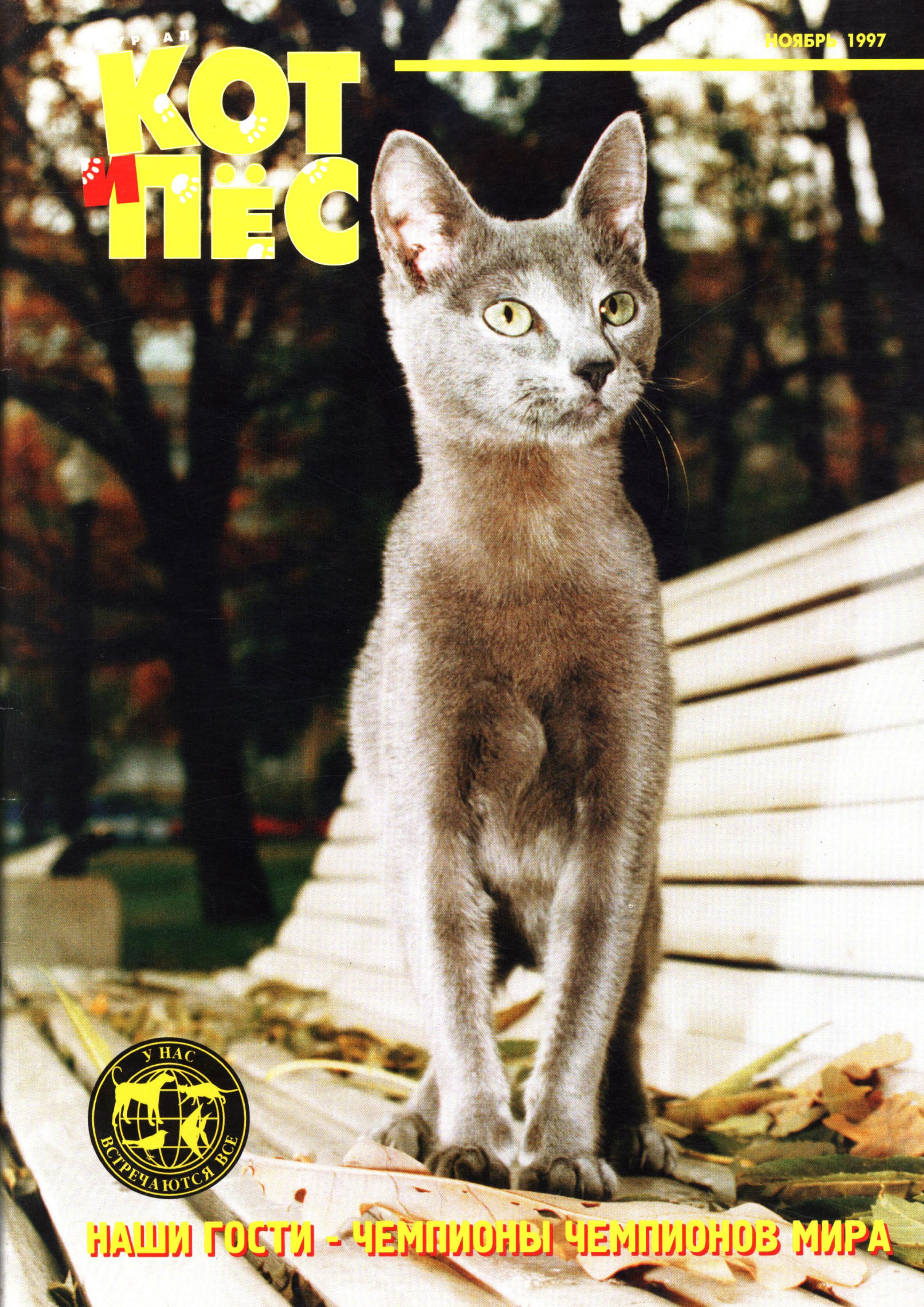 Отсутствует Кот и Пёс №11/1997