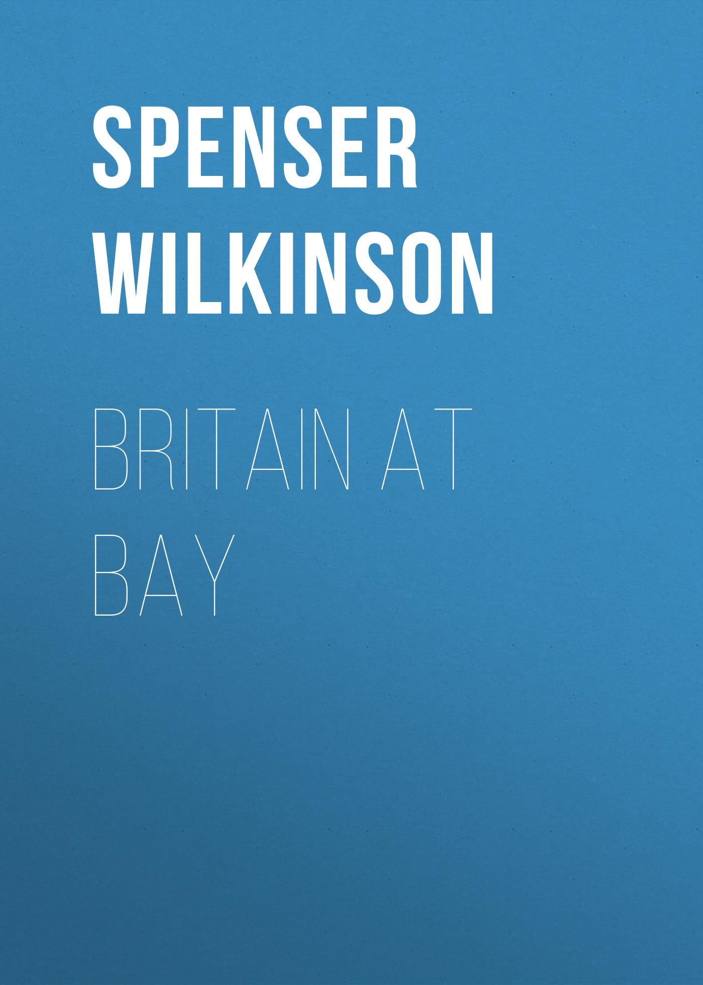 Spenser Wilkinson Britain at Bay spenser edmund spenser s poetry norton critical editions