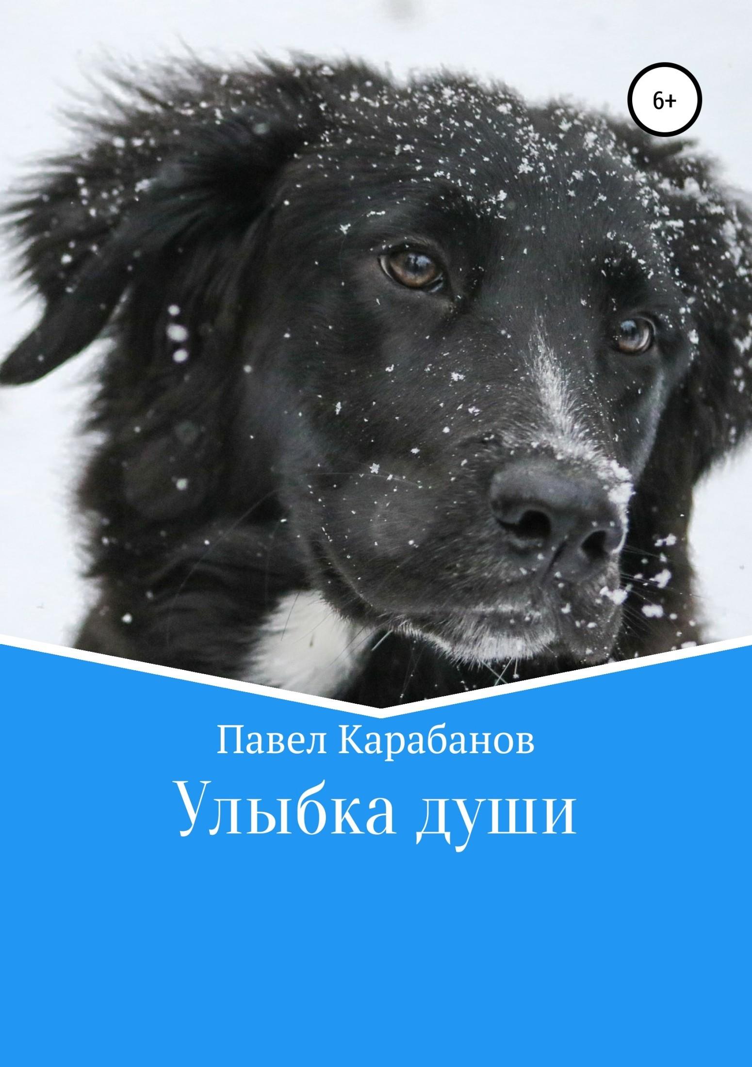 Павел Юрьевич Карабанов Улыбка души