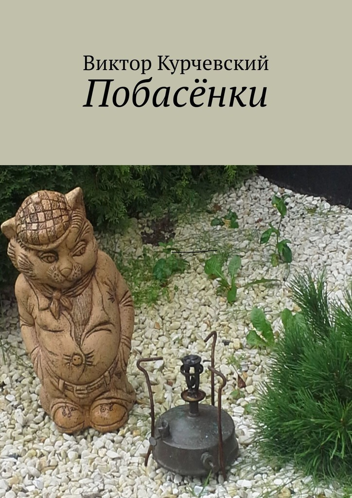 Виктор Курчевский Побасёнки ямалеев р нихрена анекдоты в стихах