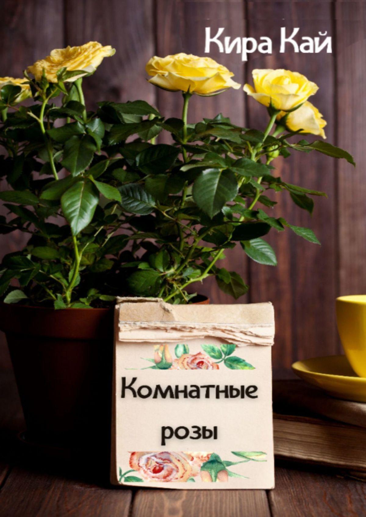 Кира Кай Комнатные розы. Для начинающих шторы комнатные айлант об13
