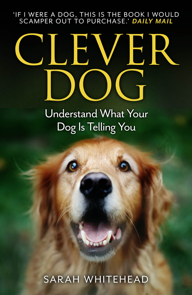 Sarah Whitehead Clever Dog: Understand What Your Dog is Telling You chip wants a dog
