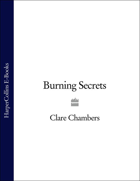 Clare Chambers Burning Secrets dkny chambers ny2494