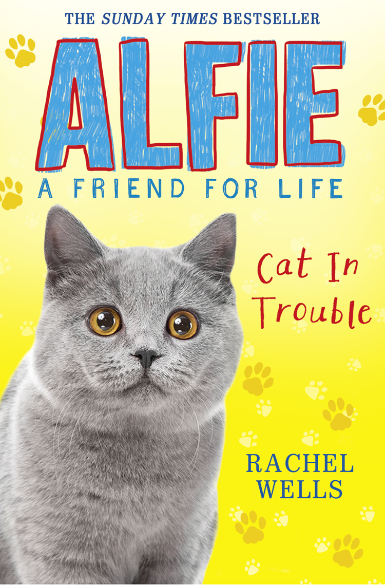 Rachel Wells Alfie Cat In Trouble alfie weather