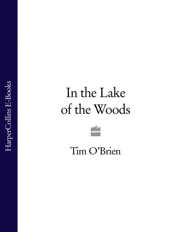 Tim O'Brien In the Lake of the Woods the lake