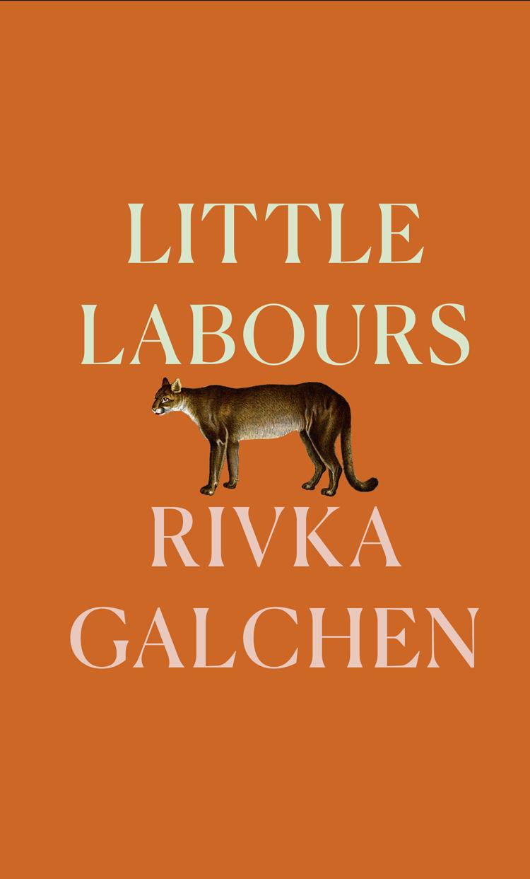 Rivka Galchen Little Labours rivka galchen atmospheric disturbances