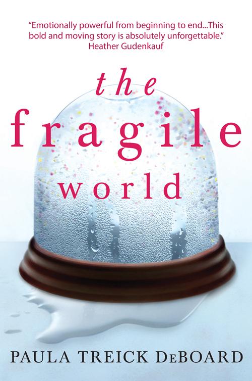 Paula DeBoard Treick The Fragile World fragile things
