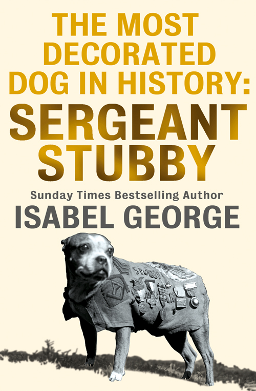 Isabel George The Most Decorated Dog In History: Sergeant Stubby