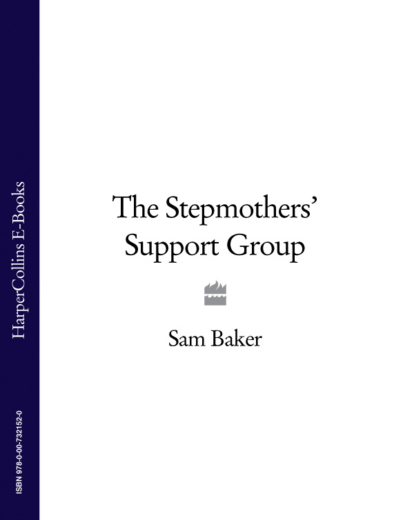 Sam Baker The Stepmothers' Support Group the artful baker