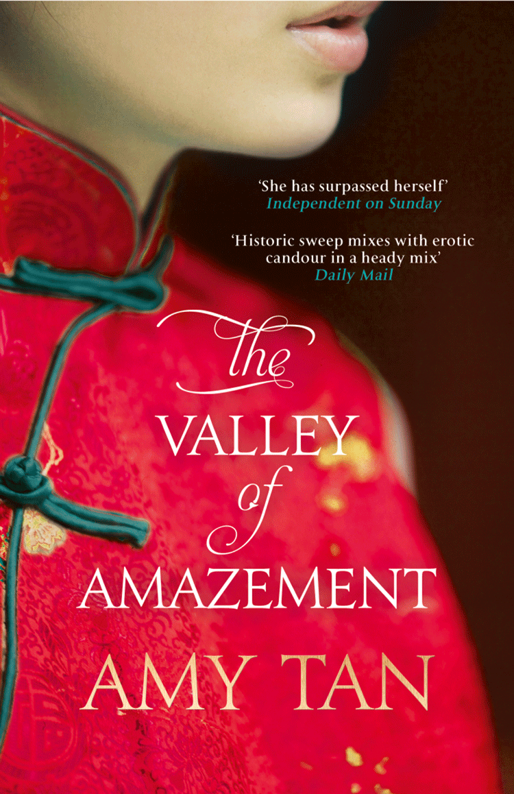Amy Tan The Valley of Amazement amy tan the hundred secret senses
