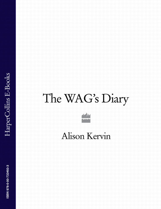 Alison Kervin The WAG's Diary alison kervin a wag abroad