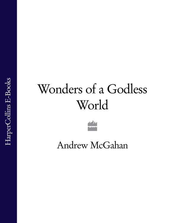 Фото - Andrew McGahan Wonders of a Godless World andrew hill andrew hill point of departure