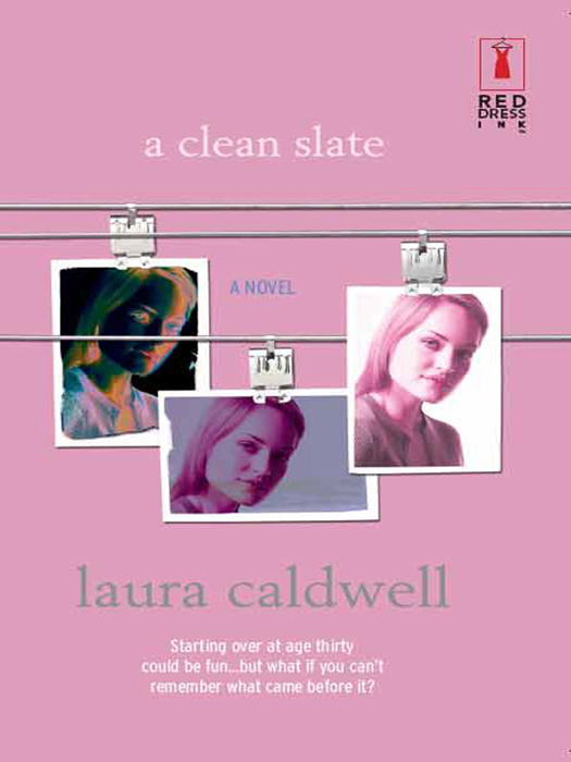 Laura Caldwell A Clean Slate chip wants a dog