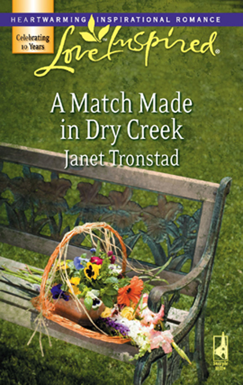 Janet Tronstad A Match Made in Dry Creek janet tronstad silent night in dry creek