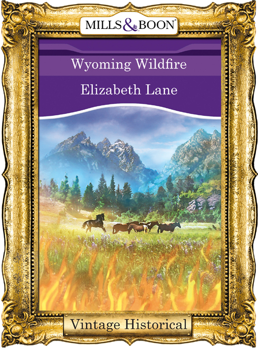 Elizabeth Lane Wyoming Wildfire fragile things a